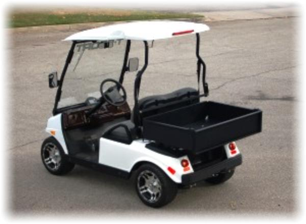 T Sport Electric Golf Carts on